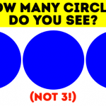 How Many Circles Can You See In This Tricky Eye Test?