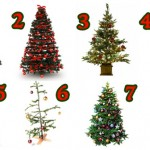 The Christmas Tree You Pick Reveals Something Unique About You