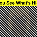 Is Your Vision Sharp? Find out If You Can See What's in This Image